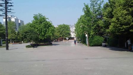 20200503营山白塔公园【手机】【1080p】6分40秒★★★★★