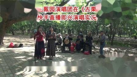 邳州九鳯园演唱团在《古栗园》快手直播实况- 楼外楼