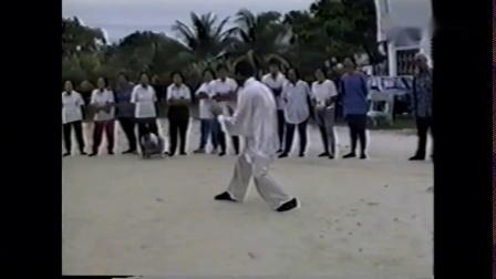 太极拳名家董英杰之孙董增辰1991年演练家传太极拳