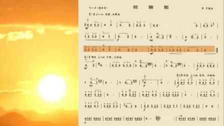 二胡独奏《拉骆驼》动态简谱欣赏-张令杰演奏