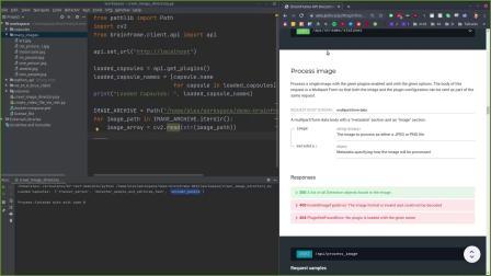如何进行BrainFrame REST API开发_培训演示-2