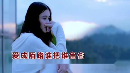 婧琪 - 爱成陌路