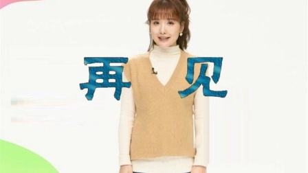 中国中央电视台再见 (第48版)
