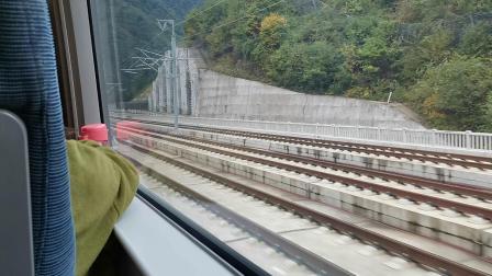 20191007 103822 D6858次列车进西成高铁新场街站