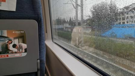 20191007 093022 D6858次列车运行于汉中站至新场街站区间