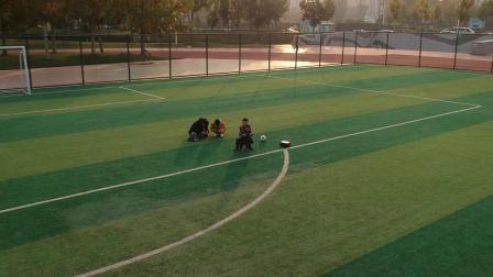 郑东新区体育公园游玩随拍
