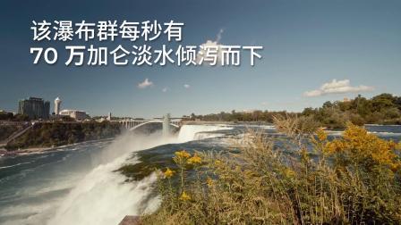 Into Nature's Wild - Niagara Falls
