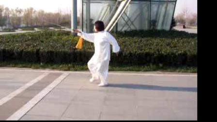 2008年11月22日武当剑练习