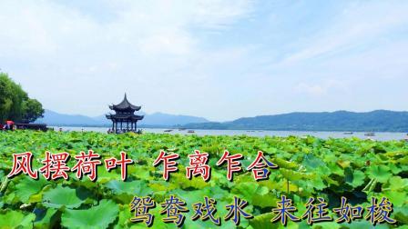 南阳大调曲《贾似道游湖》演唱:马庆萌
