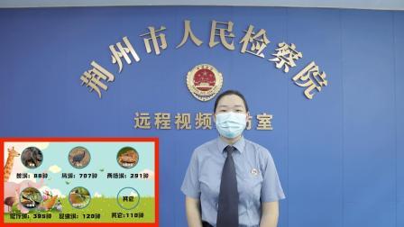 """荆州市人民检察院""""保护野生动物,从你我做起""""教育宣传片"""