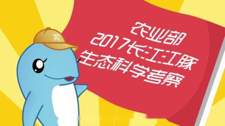 """2017""""豚口""""普查"""