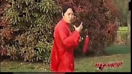 陈氏太极单剑教学[16-17式] 郑冬霞