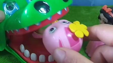 大鳄鱼把小萌鸡吃了,白雪拿着大锤子把大鳄鱼打的把小鸡吐出来了,白雪终于见到小萌鸡了!