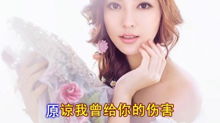忘了我的爱 -杭娇演唱(DJ何鹏版