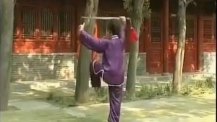 陈氏太极剑49式-徐勤兰背向演练字幕