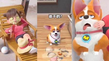 飞狗MOCO:小柯基吃放屁豆,不料下一幕竟发生这样的事,快挨揍了