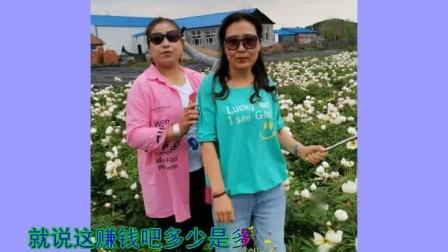 和美女去看花