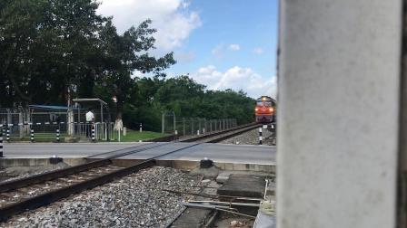 (广茂线火车视频)DF4B 2254牵引K1206通过肇庆学院道口(昆明-深圳东)