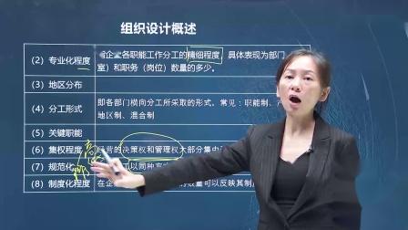 2020中级经济师【人力资源管理】组织设计概述(四)