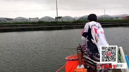 速拔哥钓鱼遇到大暴雨,天气闷热·鱼上浮,饵料小药加的多味道大钓的还不错