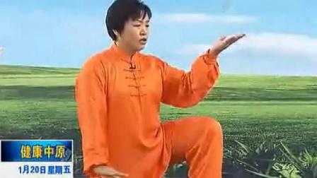 陈氏太极拳老架一路第三段(19-27式)