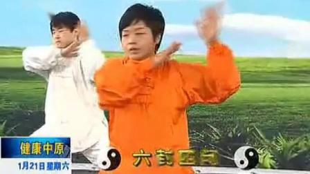 陈氏太极拳老架一路第六段(46-54式)