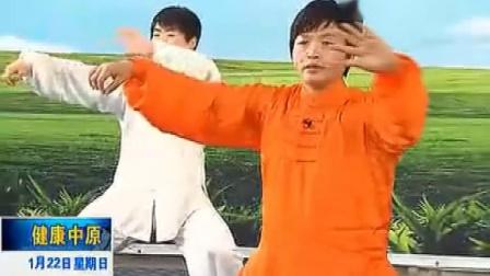 陈氏太极拳老架一路第七段(55-64式)