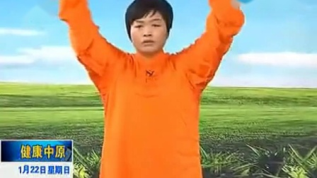 陈氏太极拳老架一路第八段(65-74)