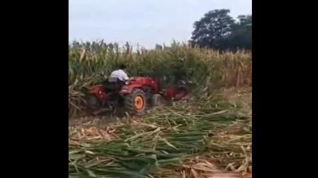 四轮带动的玉米秸秆割晒机玉米秸秆收割机值得信赖