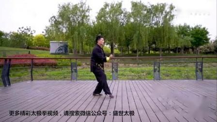 陈式太极拳老架一路-王雨