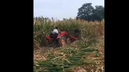 玉米秸秆割晒机视频玉米秸秆收割机价格|型号|企业|图片