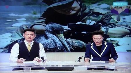 BTV生活  追鹳日记