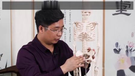 胡青耀:玉骨精雕徒手调整骨盆骨收,收胯缩阴!