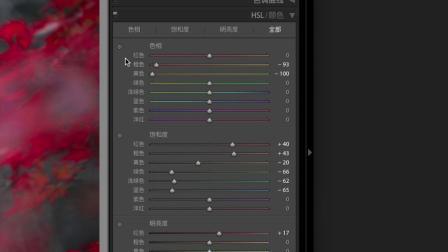 色彩黑白双修利器HSL | 照片研修所