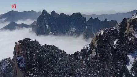 古琴曲欣赏《归来》杨青 苏一 蓝光(1080p)