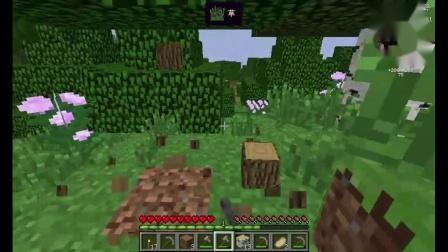 Minecraft 堡的花又开了 你不会回来看看嘛.mp4