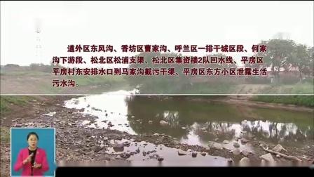 黑龙江哈尔滨:8处黑臭水体基本消除黑臭现象