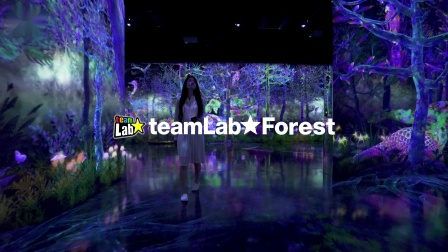 teamLab Forest - SBI SECURITIES Co., Ltd.