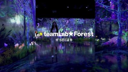 teamLab Forest - SBI SECURITIES Co., Ltd. 日文版