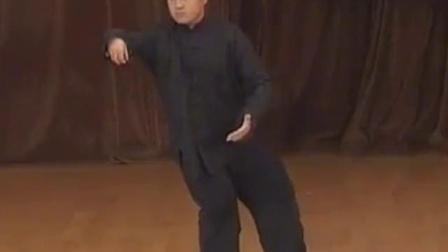 太极拳董振威先生演练董英杰太极快拳慢练加快练