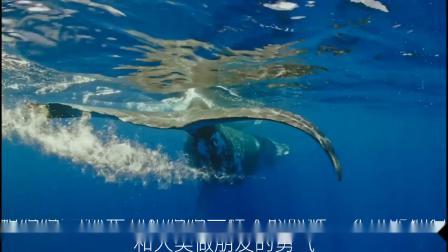《鲸碳之歌》对白设计与短视频改编竞赛 对白组三等奖–是朋友啊