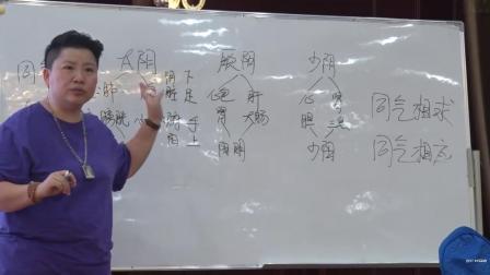 8刘红云老师董氏针灸+刺络放血综合实战技术分享