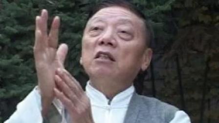 褚桂亭八卦掌精解 (严承德先生)