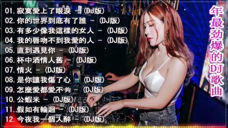 2020夜店舞曲 重低音 2020- 令人難忘的(中文舞曲)