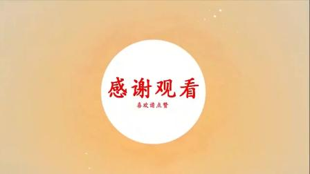 85刘红云老师董氏针灸+刺络放血综合实战技术分享