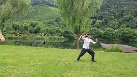 杨式太极十三刀