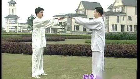 王二平太极推手 2-4