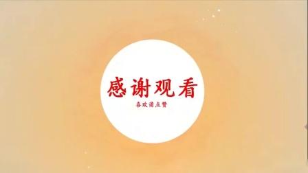 3刘光祁微刺针法,治疗各种辩证不明疑难杂症分享