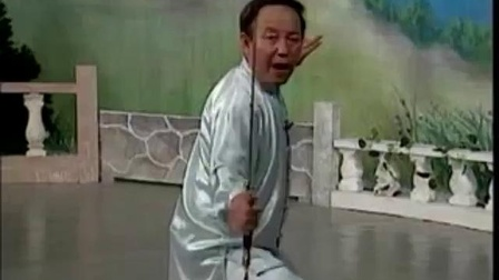 42式太极剑教学视频(下).flv