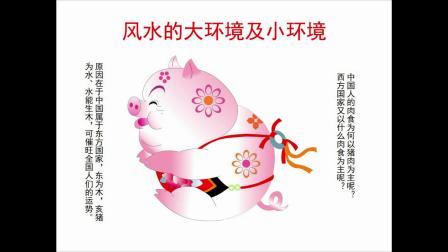 中国第一风水大师国内著名易经专家求前大师颜廷利易学风水讲座